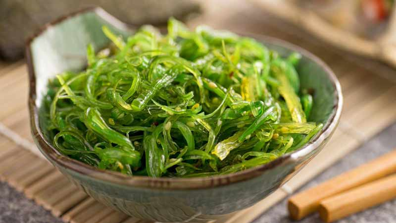 Eating Seaweed to Lose Weight; is this an Urban Myth?